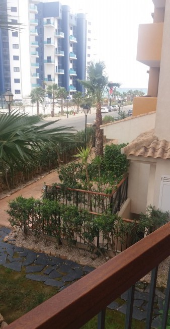 34067  The apartments from the owner, Punta Prima, Torrevieja (Spain)